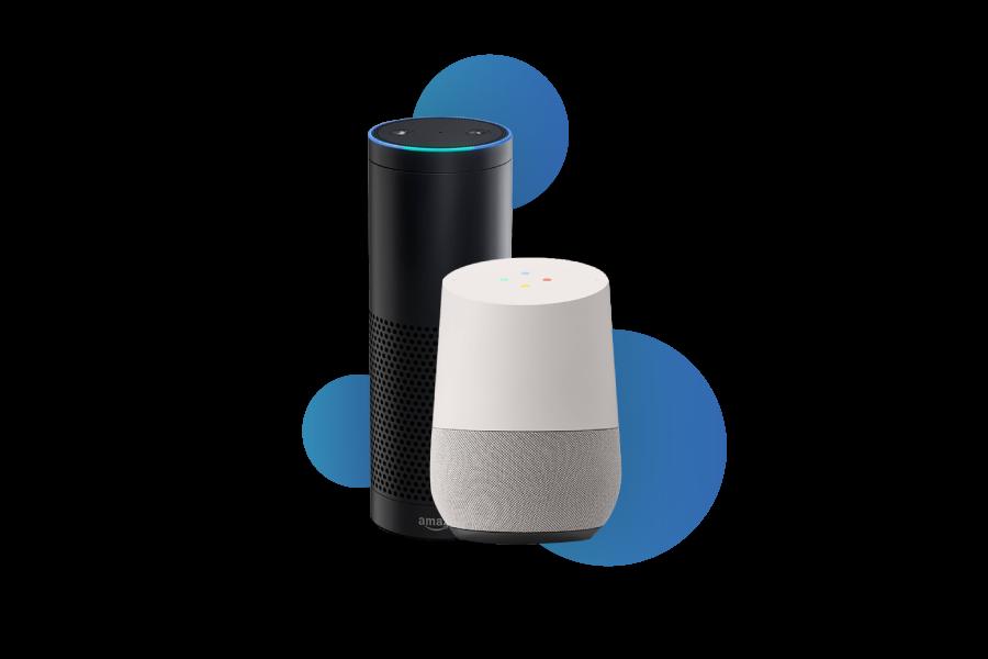 Alexa / Google Home integration